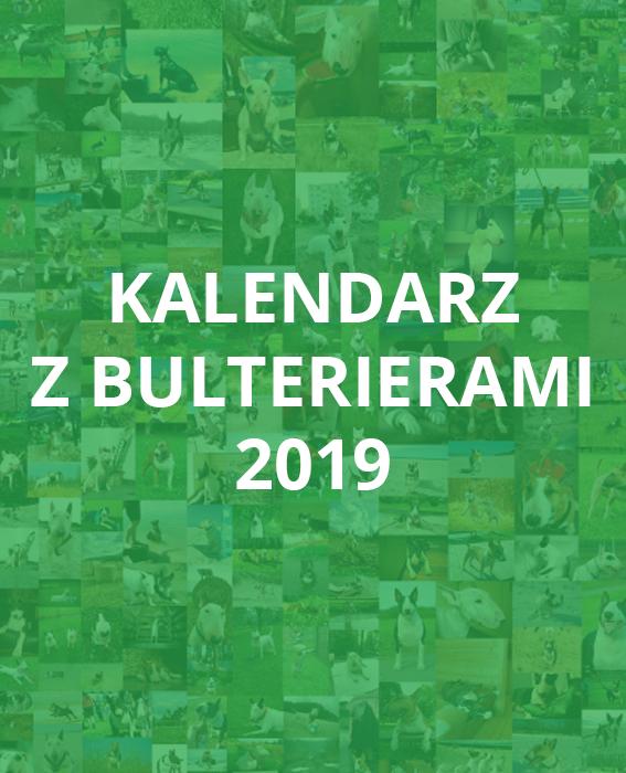 kalendarz-z-bulterierami-2019